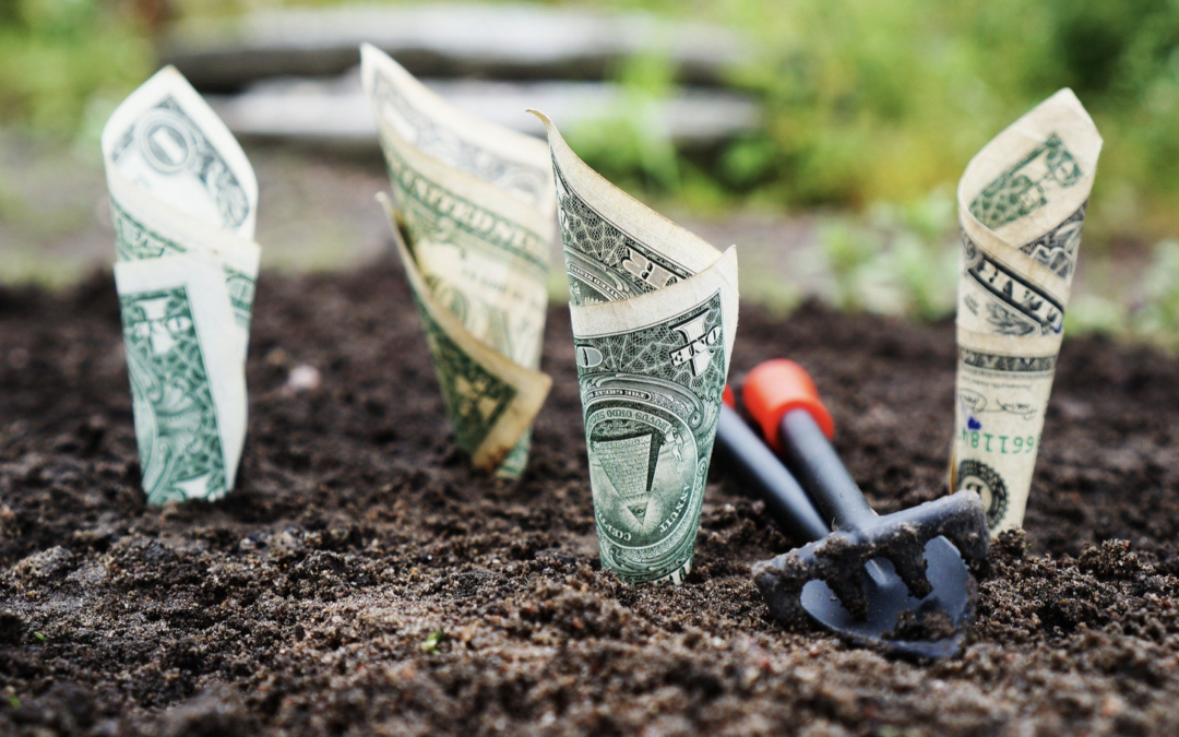 The Basics of Startup Valuations
